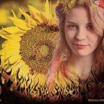 Квітка В Домі Сонця (Single)